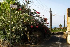 Via Venedisè - Giardini di Pantelleria